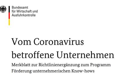 Ausschnitt aus dem Titelblatt der Richtlinie für durch Corona betroffene Unternehmen